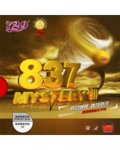 Friendship 837 Mystery