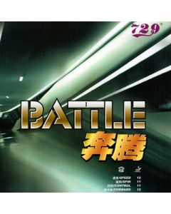 Friendship 729 Battle